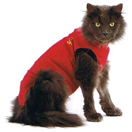 Medical Pet Shirt – Gilet de protection pour chats