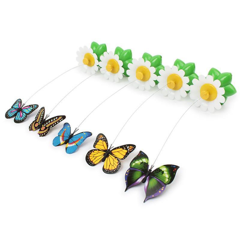 jouet-papillon-volant-pour-chat.jpg