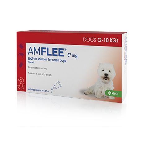Amflee Spot-On - Pipettes anti-tiques, puces et poux pour chiens