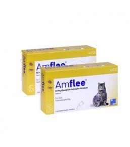 Amflee Spot-On - Pipettes anti-puces et anti-tiques pour chats