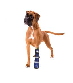Medical PetS Boot – Chausson de protection pour chien