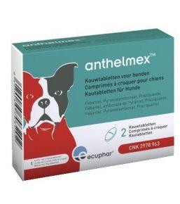 Anthelmex - petit ou moyen chien - x2 cp