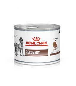 Royal Canin Recovery - Boîtes