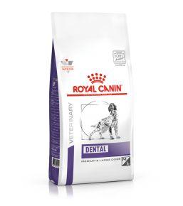Royal Canin Dental Chien plus de 10kg - Croquettes