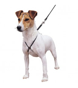 Lupi - Harnais anti traction pour chiens