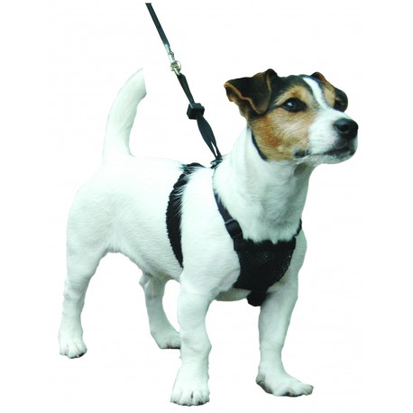 Sporn - Harnais anti traction pour chiens SMALL
